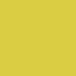 Plotterie.nl – Cricut Premium Pastel Geel