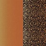 Plotterie.nl – Cricut Infusible Ink Leopard 2