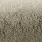 Plotterie.nl – Cricut vinyl Textured Metallic Platinum 2